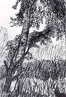 """Otto Modersohn (1865-1943)  """"Baumstaemme"""", ca 1901"""