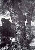 """Fritz Overbeck (1869-1909) """"Eichstamm"""", 1903"""