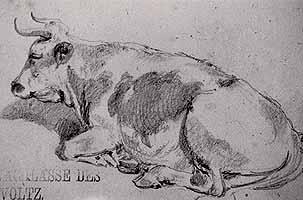 """Johann Heinrich Voltz (1817-1886) """"Liegende Kuh"""""""