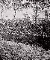 """Rudolf Sieck (1877-1957) """"Chiemgaulandschaft"""""""