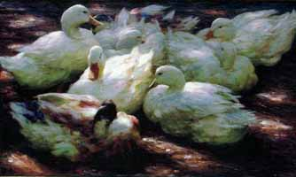 """Alexander Koester (1864-19320 """"Enten im Sonnenlicht"""""""