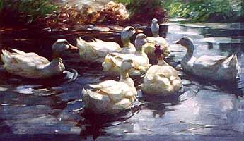 """Alexander Koester (1864-1932) """"Sieben Schwimmende Enten"""""""